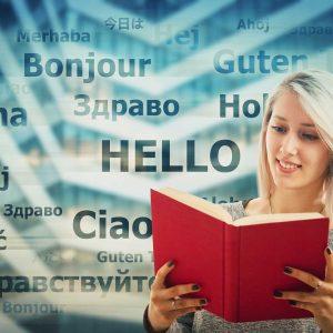 Diplomová práca v cudzom jazyku
